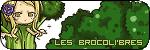 L'ile et le monde extérieur - Page 2 Brocotpetit